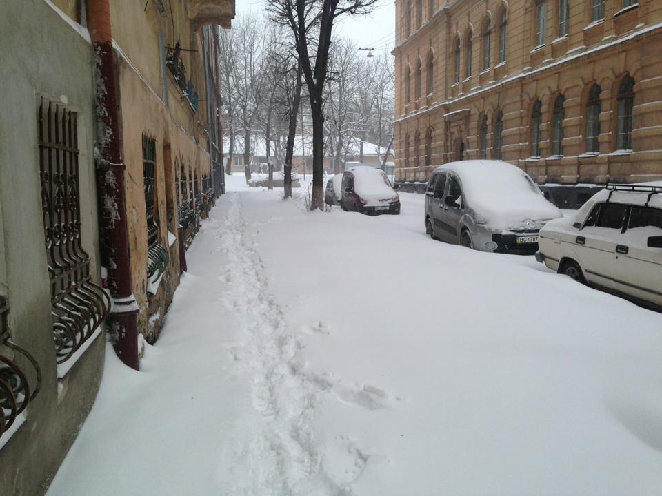 Зима весною у Львові